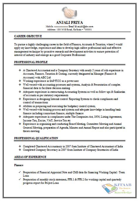 write  professional cv resume  jobs