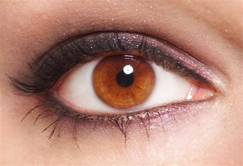 brown eye colors does your eye color affect your vision siowfa16