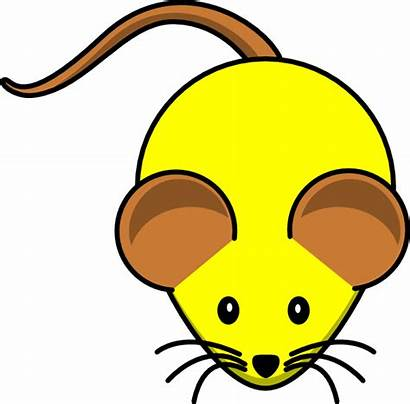 Mouse Brown Ears Clipart Yellow Ear Clip
