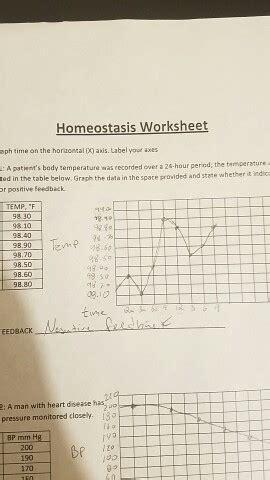 solved homeostasis worksheet    horizontal axis