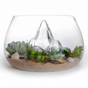 "Award-Winning 12 7"" Glass Terrarium Indoor Garden: NOVA68 com"