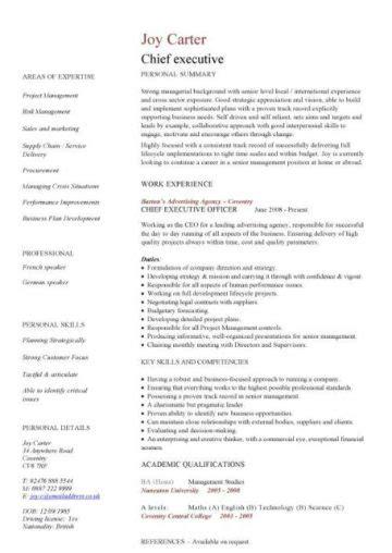 Executive Cv by Executive Cv Template Resume Professional Cv Executive