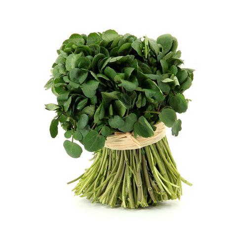 recettes cuisine minceur cresson légumes