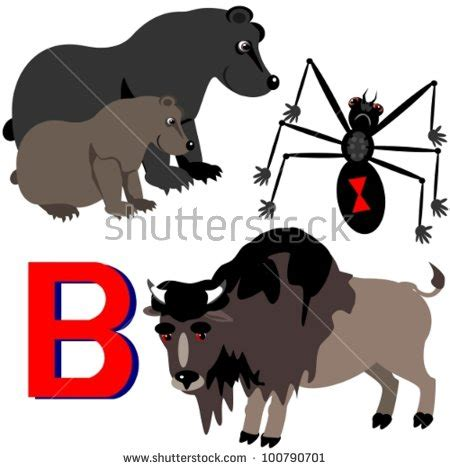 animals that start with the letter a b bison black widow illustration stock vector 29229