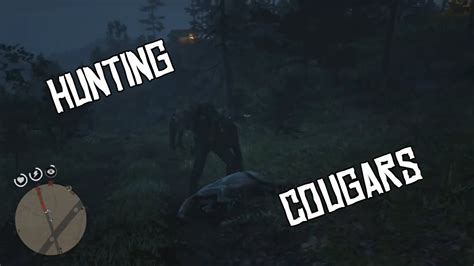 red dead redemption  cougar locations   find