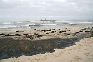 Oil Spill Slicks Cape Town Beach