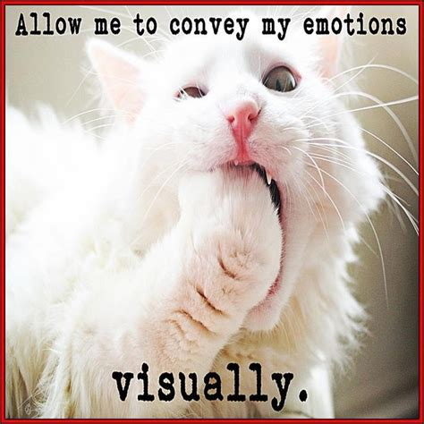 Gagging Meme - quot gag me with a spoon quot lolcats pinterest spoons haha and my emotions