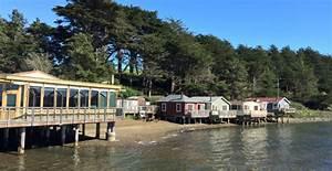 Marina Times - Nick's Cove isn't dog friendly — it's dog ...