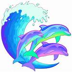 Clipart Dolphin Florida Dolphins Transparent Webstockreview