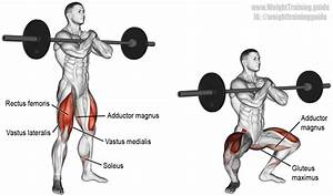 Zercher Squat Exercise Instructions And Video