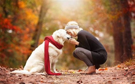 animal human friendship images wallpapers