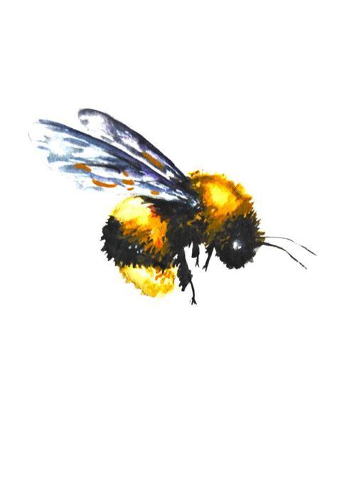 watercolor painting original fine art bumble bee
