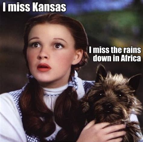 Dorothy Meme - daily picdump 392