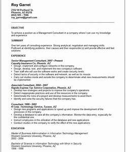 Management consultant Resume Example Free templates
