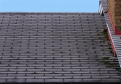 Removing Moss From Roof Solar Tiles For Roof India Shingle Cleaner Ox 3000 Reviews How Often To Re Interlock Metal Roofing Alberta Roofers In Denton Tx St Charles Mo Repairs Memphis Tn Red Inn Plus Suites Chattanooga Downtown