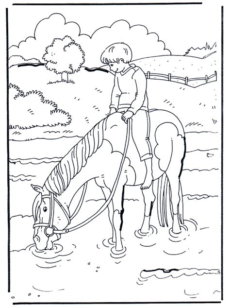 sur leau chevaux