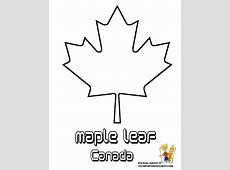 Maple Leaf Canada White Clipartsco