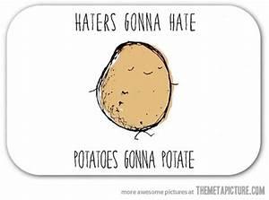 Potatoes... - The Meta Picture