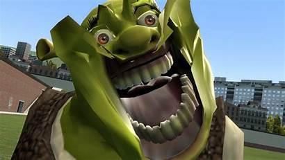 Shrek Memes Face God Meme Funny Derp