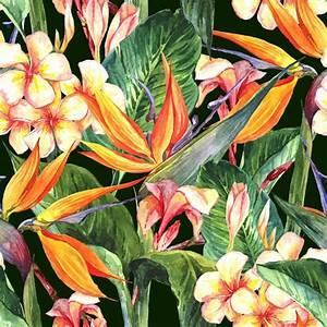 papier peint seamless tropical avec des fleurs exotiques With affiche chambre bébé avec interflora fleurs exotiques