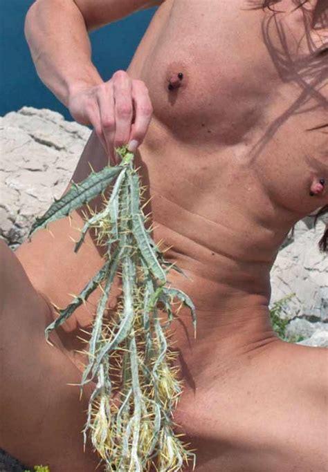 pussy folter kaktus
