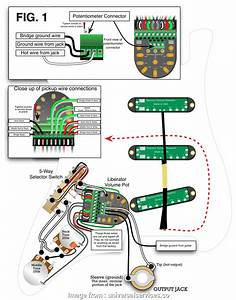 2 Humbucker 5  Switch Wiring Top Wiring Diagram Seymour