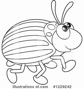 Beetle clipart black and white - Pencil and in color ...