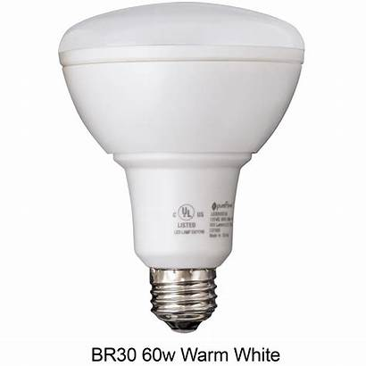 Greentech Dimmable Bulbs Pure Led Pack Power