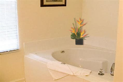 Garden Soaking Tub by Garden Style Tub