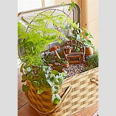 Create A Magical Miniature Garden  Midwest Living