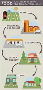 Where does our food come from? Visual supply chain ...
