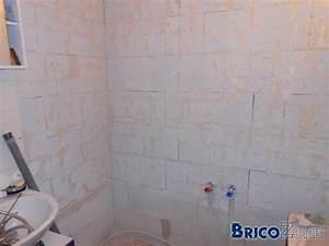 Pose Carrelage Mural Sur Carrelage Existant : baingoire pose de carrelage mural sur carrelage existant ~ Melissatoandfro.com Idées de Décoration