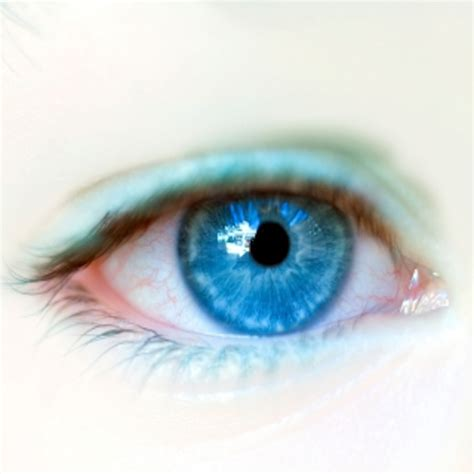 magic eye color effect magic eye color effect free color contact lens eye