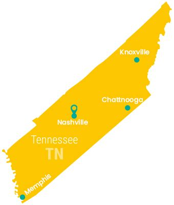 early childhood education degree requirements  tennessee