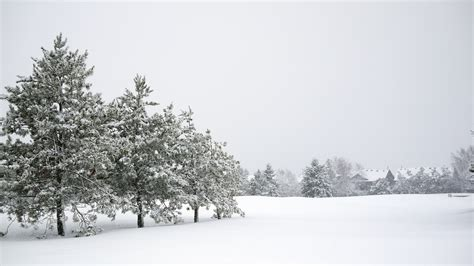 Free Winter Picture by Top 10 Albums Of 2015 Up To Here Rreverb