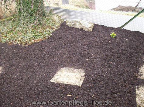 Rindenmulch Anleitung Zum Mulchen Im Garten