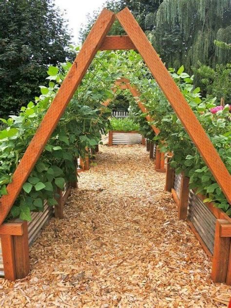 A Frame Garden Trellis by A Frame In Corrugated Metal Raised Beds This Type Of