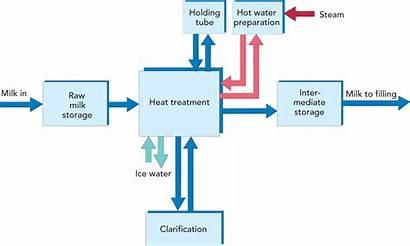 Process Line Milk Pasteurization Treatment Heat Whole