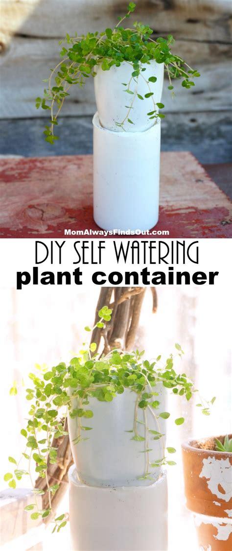 Diy Self Watering Bottle For Plants  Diy Virtual Fretboard
