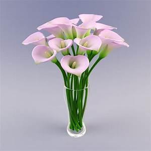Vases Design Ideas: Flower Vase Stock Photos Royalty Free ...