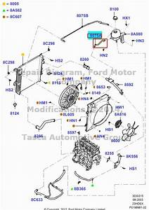 Wiring Diagram Database  2003 Ford Ranger 23 Cooling