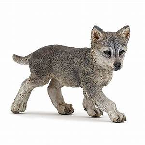 Bébé Loup Blanc : figurine loup b b jeux et jouets papo avenue des jeux ~ Farleysfitness.com Idées de Décoration