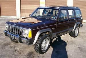 Jeep Cherokee 1990 : 1990 jeep cherokee xj pictures information and specs auto ~ Medecine-chirurgie-esthetiques.com Avis de Voitures