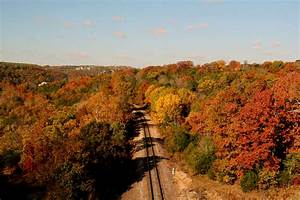 Best Places to See Fall Foliage   ExploreBranson.com ...