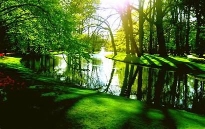 Spring Springtime Pond Park Desktop Backgrounds Wallpapers
