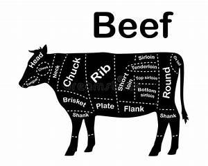 Beef Stock Illustrations  U2013 60 578 Beef Stock Illustrations