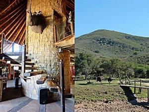 sudafrika mit kindern von tierischen begegnungen und With katzennetz balkon mit garden route safari lodge
