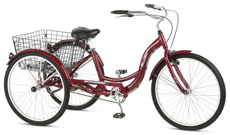Popular 3 Wheel Bikes For Adults To Enjoy