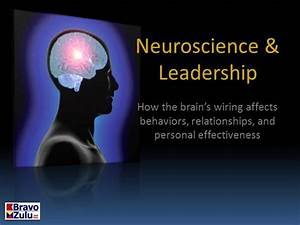 Neuroscience  U0026 Leadership