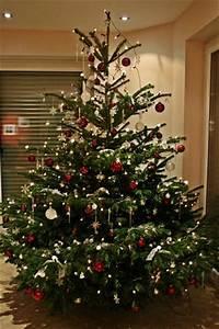 Weihnachtsbaum Rot Weiß : weihnachtsbaum page 4 mein sch ner garten forum ~ Yasmunasinghe.com Haus und Dekorationen